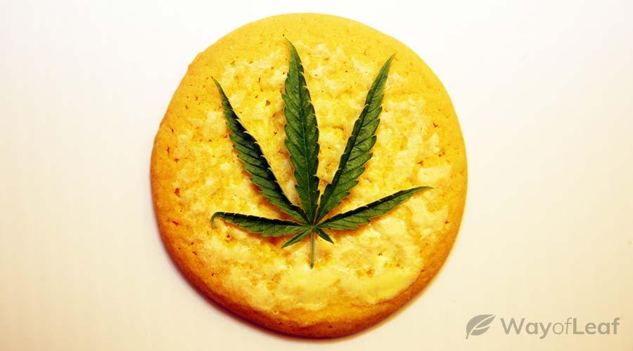 canna-lemon-drizzle-cake