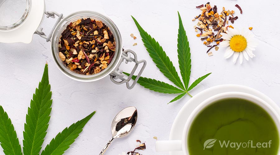 Cbd Chamomile Tea Benefits Uses And Buyer S Guide