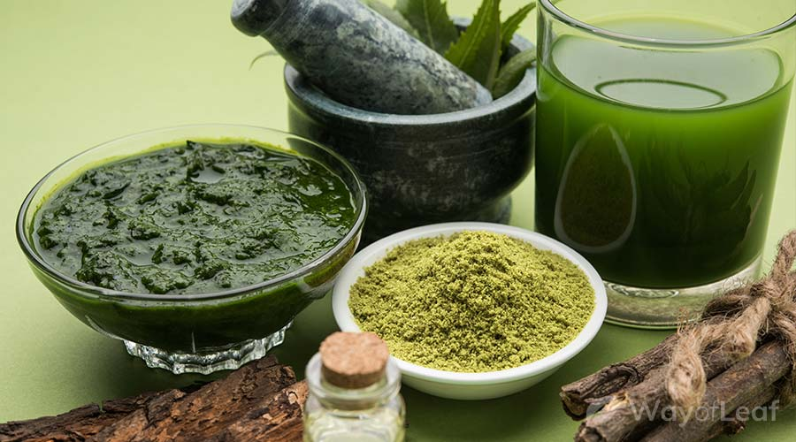 how-to-use-neem-oil