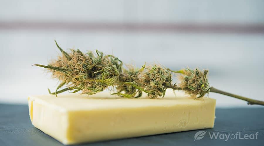 apple-pie-weed