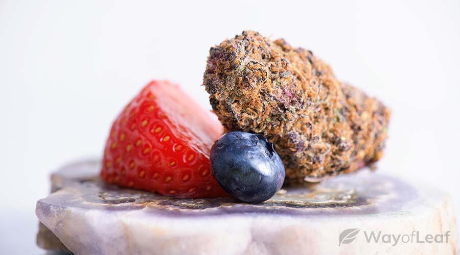 member-berry-strain