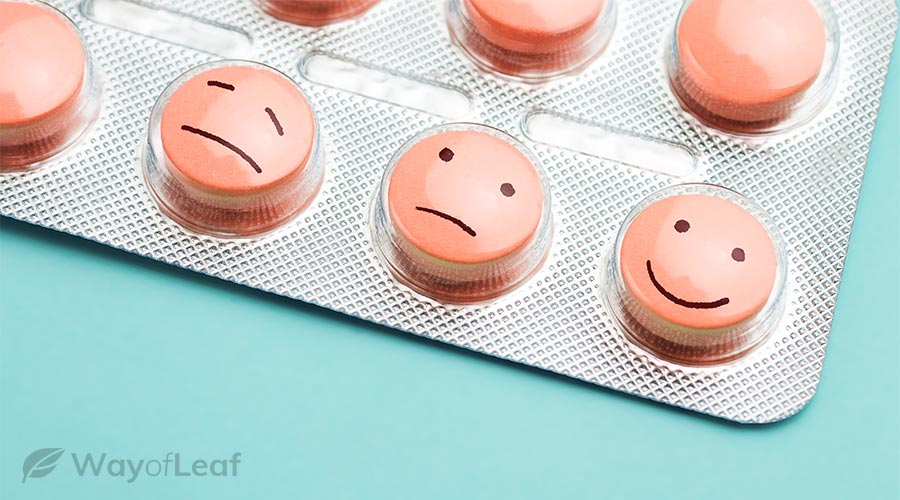 other antidepressant drugs and psychedelics
