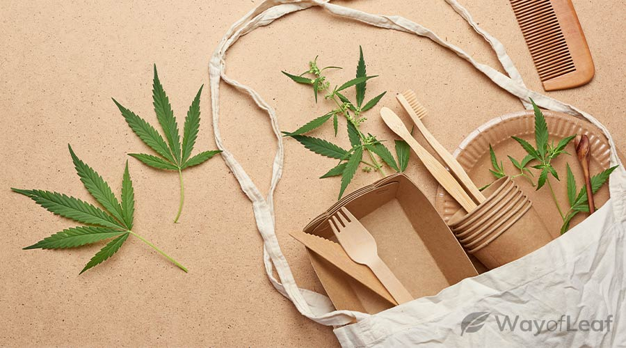 what-does-the-future-hold-for-hemp-plastic