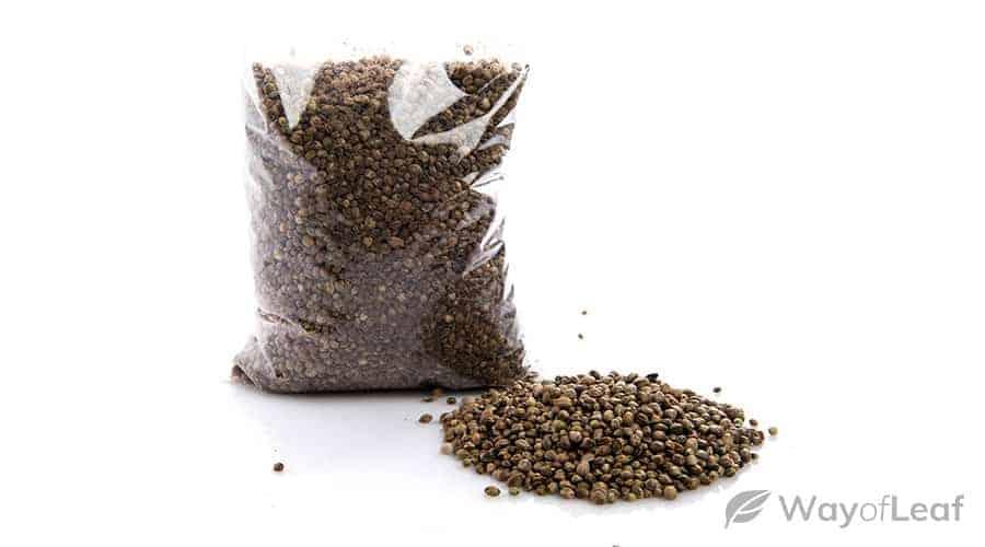 growers-choice-seeds