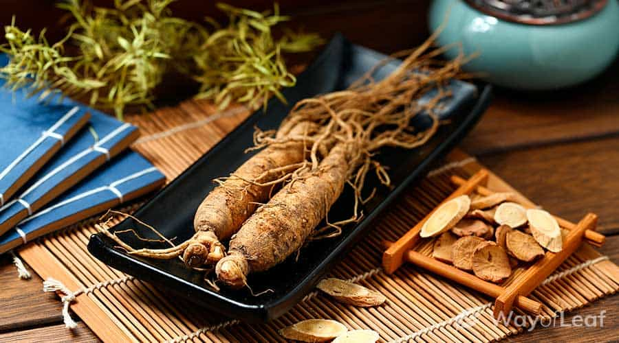 does-ginseng-contain-caffeine