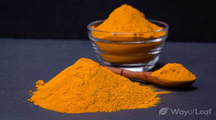 what-to-look-for-in-the-best-turmeric-supplements