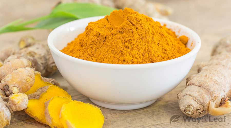 what-is-turmeric?