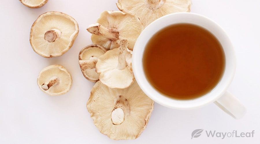 best-mushrooms-for-immune-system-support