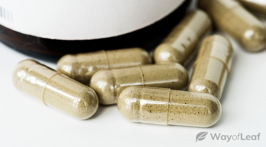 what-is-ibogaine-used-for